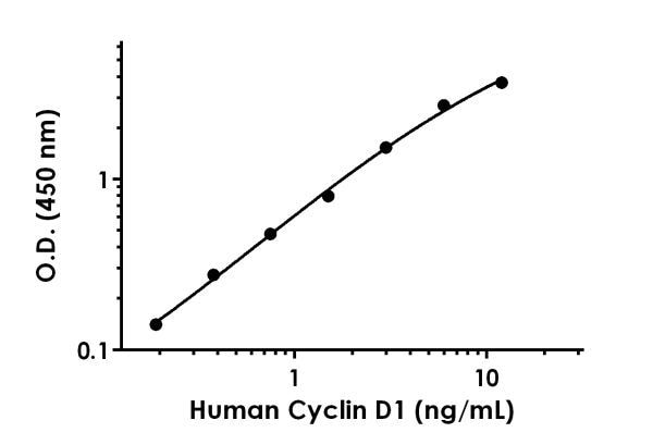 Example of human Cyclin D1 standard curve.