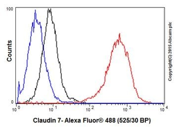 Flow Cytometry - Anti-Claudin 7/CLDN-7 antibody [EPR18073] - BSA and Azide free (ab214576)