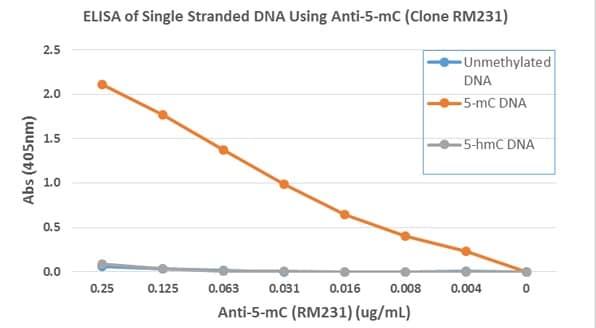 ELISA - Anti-5-methylcytosine (5-mC) antibody [RM231] (ab214727)