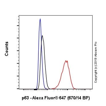 Flow Cytometry - Anti-p63 antibody [EPR5701] - BSA and Azide free (ab214790)