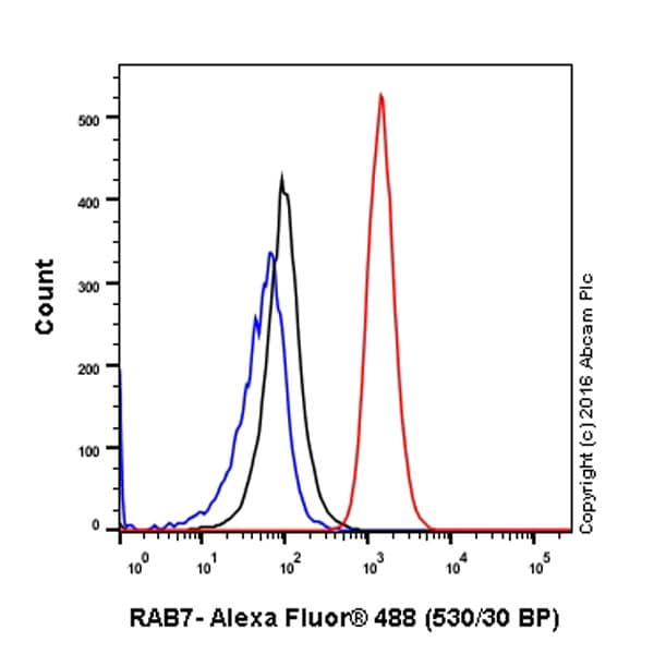Flow Cytometry - Anti-RAB7 antibody [EPR7589] - BSA and Azide free (ab214806)