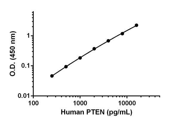 Human PTEN standard curve.