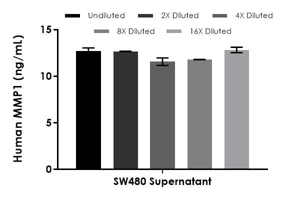 Interpolated concentrations of native MMP1 in SW480 cell culture supernatant samples.