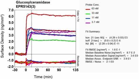 OI-RD Scanning - Anti-GBA antibody [EPR5143(3)] - BSA and Azide free (ab215260)