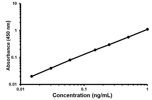 Human CDNF ELISA kit ab215415. Standard Curve, Cubic spline fit curve on a log-log scale.