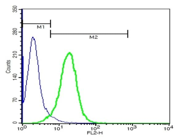 Flow Cytometry - Anti-Tspan-9 antibody (ab215432)