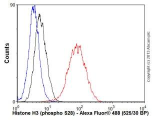 Flow Cytometry - Anti-Histone H3 (phospho S28) antibody [E191] - BSA and Azide free (ab215532)