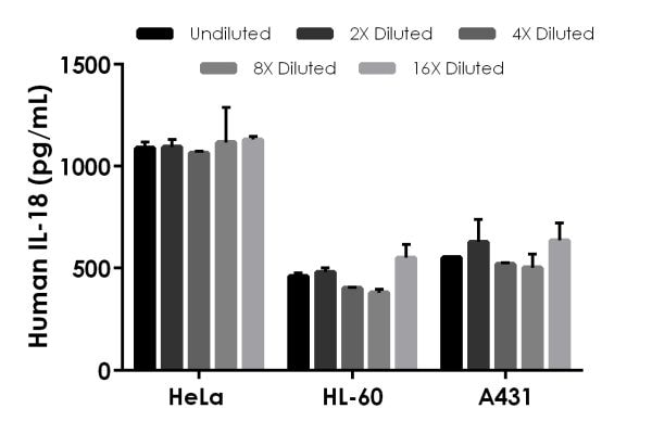 Interpolated concentrations of native IL-18 in human HeLa, HL-60, and A431 Cell Extract samples based on a 800 µg/ml extract load.
