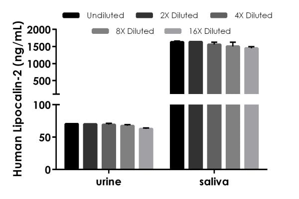 Interpolated concentrations of native Lipocalin-2 in human urine and saliva samples.