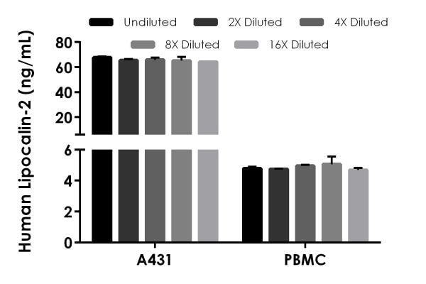 Interpolated concentrations of native Lipocalin-2 in human A431 cell culture supernatant and peripheral blood monocyte (PBMC) cell culture supernatant.