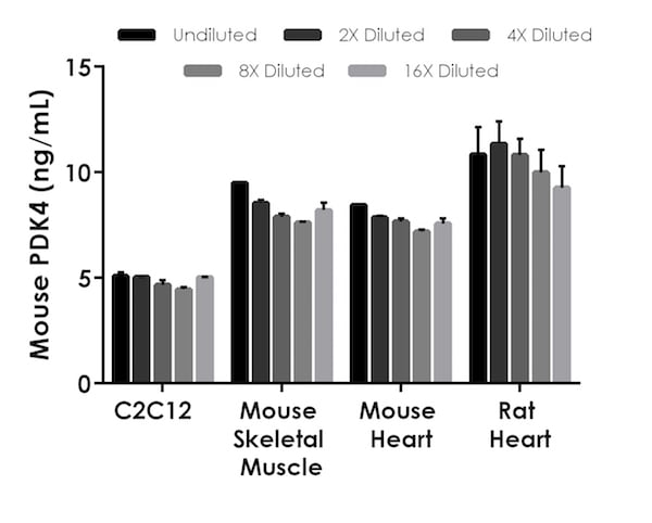 Interpolated concentrations of native PDK4 in C2C12 cell extract sample, mouse skeletal muscle tissue extract and mouse and rat heart tissue extracts.