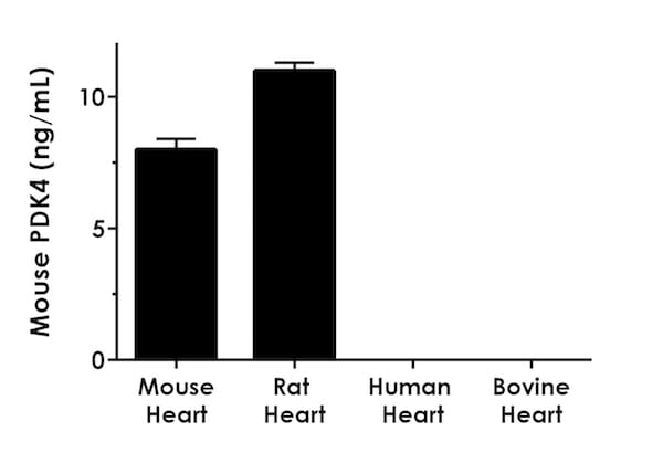 Interpolated concentrations of PDK4 in various species heart tissue extracts.