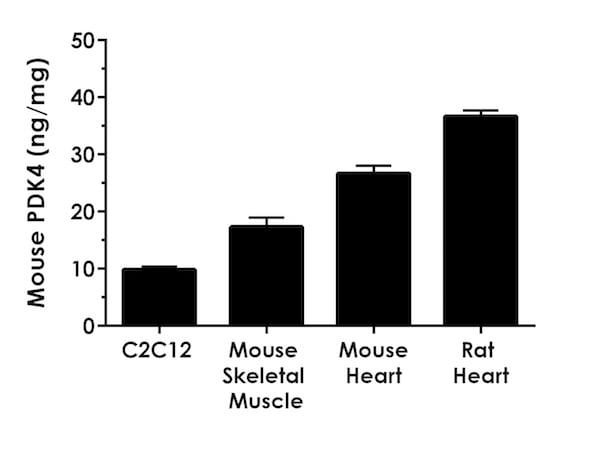 Interpolated concentrations of PDK4 in various cell and tissue extracts.