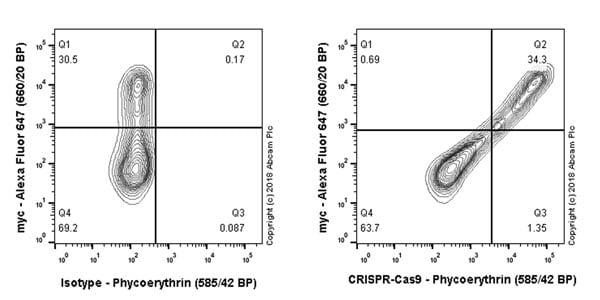 Flow Cytometry - Anti-CRISPR-Cas9 antibody [EPR19799] (Phycoerythrin) (ab215701)