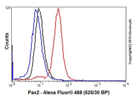 Flow Cytometry - Anti-Pax2 antibody [EP3251] - BSA and Azide free (ab215974)
