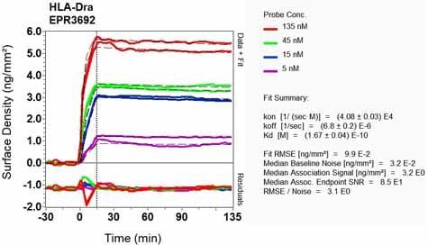 Other - Anti-HLA-DR antibody [EPR3692] - Low endotoxin, Azide free (ab215985)