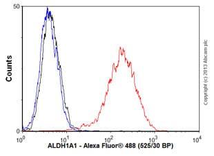 Flow Cytometry - Anti-ALDH1A1 antibody [EP1933Y] - BSA and Azide free (ab215996)