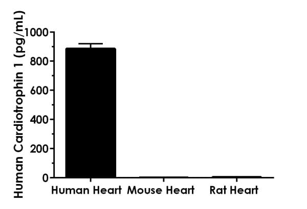 Other species reactivity was determined by measuring a 1,000 µg/mL extract load of various species heart tissue extract.