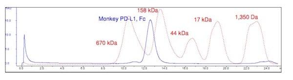 Other - Recombinant Cynomolgus Monkey PD-L1 protein (Fc Chimera) (ab216195)