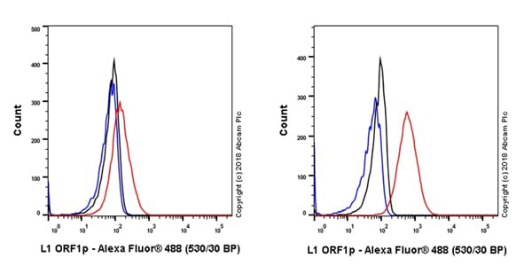 Flow Cytometry - Anti-LINE-1 ORF1p antibody [EPR21844-108] (ab216324)
