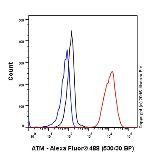 Flow Cytometry - Anti-ATM antibody [Y170] - BSA and Azide free (ab216617)