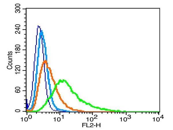 Flow Cytometry - Anti-Nephrin antibody (ab216692)