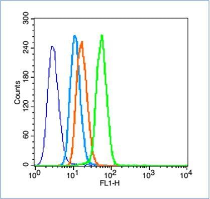 Flow Cytometry - Anti-HIF-1 alpha antibody (ab216842)