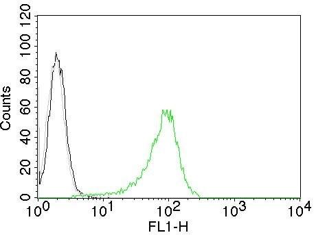 Flow Cytometry - Anti-Human Nuclear Antigen antibody [235-1] - BSA and Azide free (ab216943)