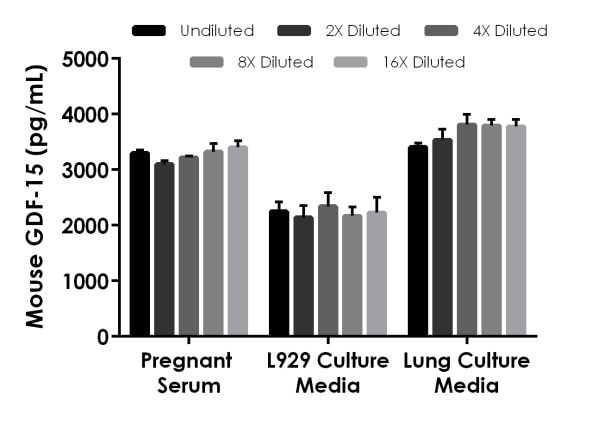 Interpolated concentrations of native GDF-15 levels in pregnant mouse serum, mouse L929 and lung culture media samples.