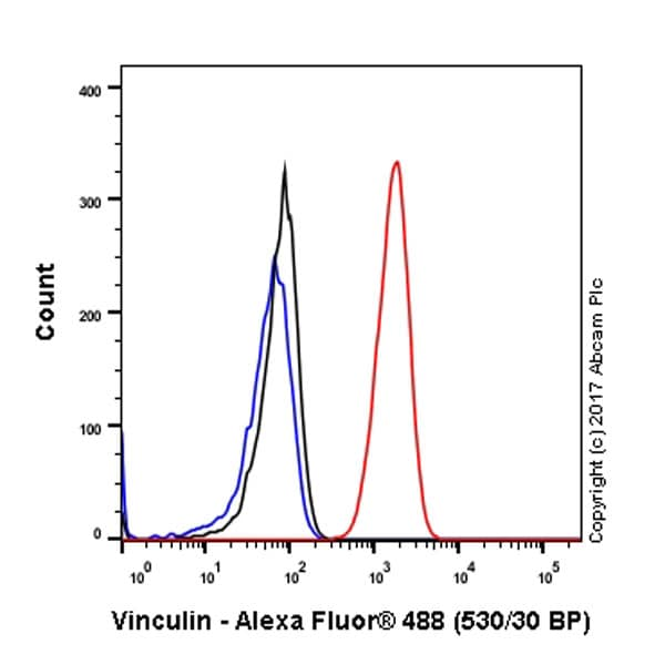 Flow Cytometry - Anti-Vinculin antibody [EPR8185] - BSA and Azide free (ab217171)