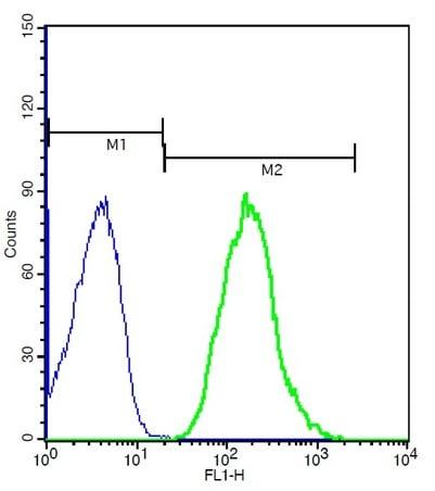 Flow Cytometry - Anti-CX3CR1 antibody (ab217291)
