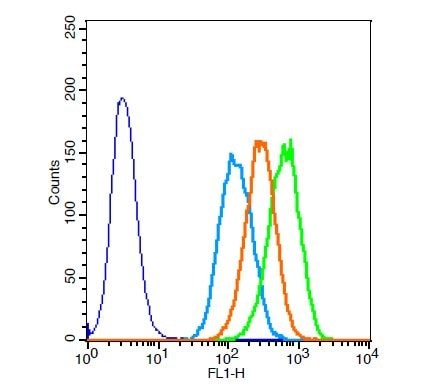 Flow Cytometry - Anti-Elastin antibody (ab217356)