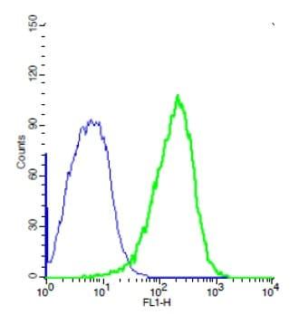 Flow Cytometry - Anti-TEM1 antibody (ab217535)