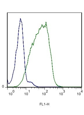 Flow Cytometry - Anti-Eph receptor B6 antibody (ab217542)