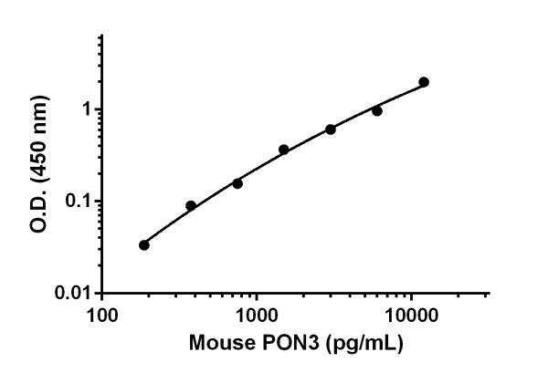 Mouse PON3 standard curve.