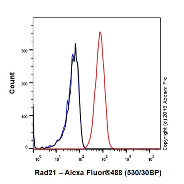 Flow Cytometry (Intracellular) - Anti-Rad21 antibody [EPR22506-15] - ChIP Grade (ab217678)