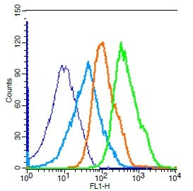 Flow Cytometry - Anti-Cdc25C antibody (ab217920)