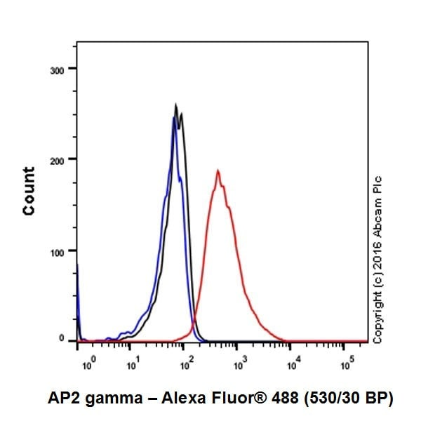 Flow Cytometry - Anti-AP2 gamma/TFAP2C antibody [EPR20331] (ab218107)