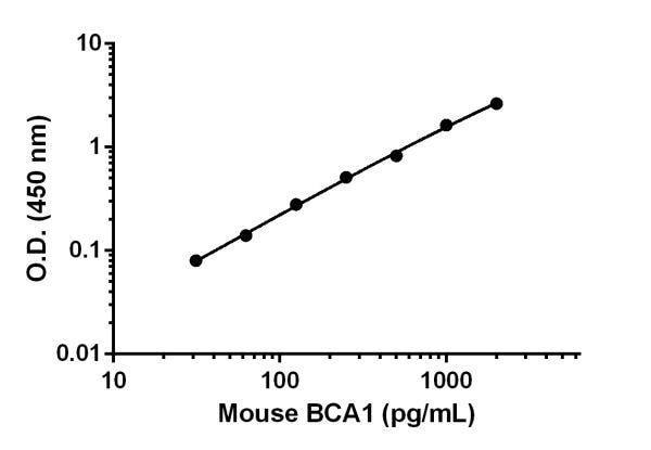 Mouse BCA1 standard curve.