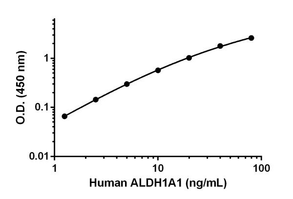 Human ALDH1A1 standard curve.
