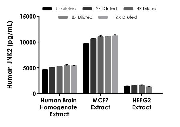 Interpolated concentrations of native JNK2 in human brain homogenate extract, MCF7 extract, and HEPG2 extract.