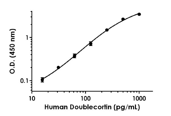 Example of human Doublecortin standard curve