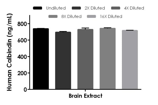 Interpolated concentrations of native calbindin in human brain tissue extract based on a 1,000 µg/mL extract load.