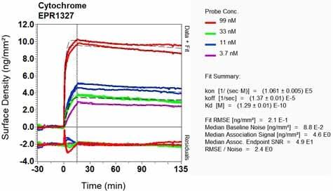 Other - Anti-Cytochrome C antibody [EPR1327] - BSA and Azide free (ab218312)