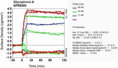 Other - Anti-Glycophorin A antibody [EPR8200] - BSA and Azide free (ab218372)