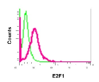 Flow Cytometry - Anti-E2F1 antibody [EPR3818(3)] - BSA and Azide free (ab218527)