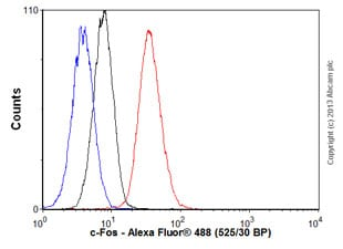 Flow Cytometry - Anti-c-Fos antibody [EPR883(2)] - BSA and Azide free (ab218578)