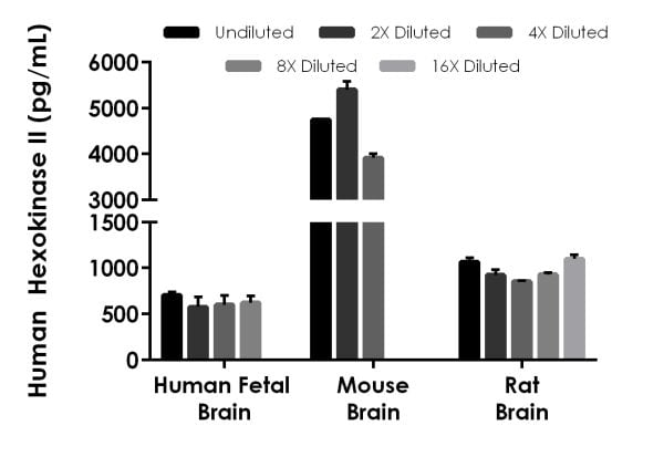 Interpolated concentrations of native Hexokinase II in human fetal brain, mouse brain, and rat brain extract samples based on 25 µg/mL, 100 µg/mL, and 12.5 µg/mL extract loads, respectively.