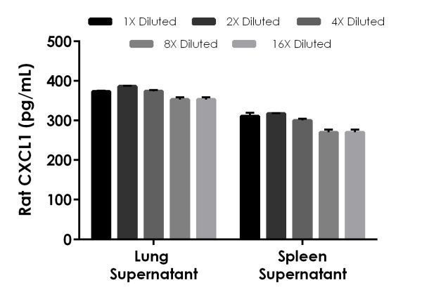 Interpolated concentrations of native CXCL1 in rat tissue culture supernatant samples.