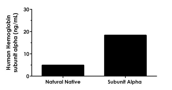 Interpolated concentrations of Natural Native Hemoglobin protein standard and hemoglobin subunit alpha recombinant protein.